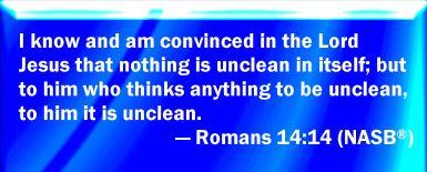romans 14 14
